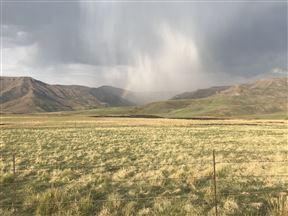 Lammergeier Private Nature Reserve - SPID:3054299