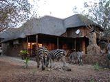 Khaya Umdani Mpumalanga-309646
