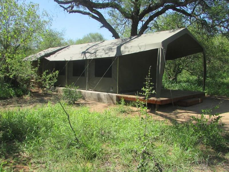 Mzsingitana Tented Camp