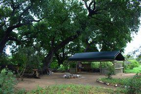 Kruger Private Bush Camp