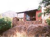 B&B335267 - Bushveld