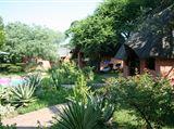 B&B342439 - Limpopo Province