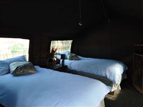 Kruger- Andova Tented Camp