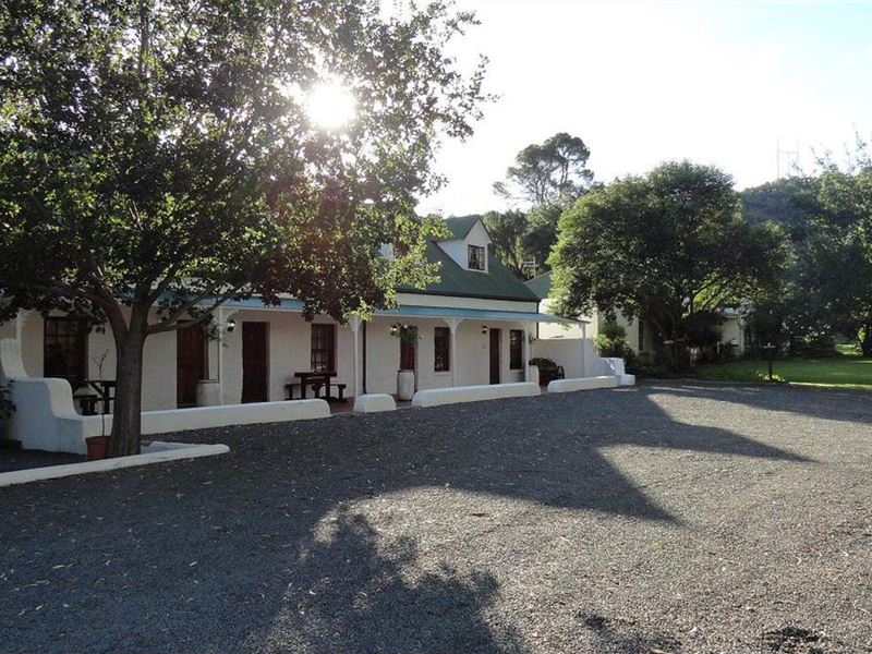 pet friendly Aliwal North