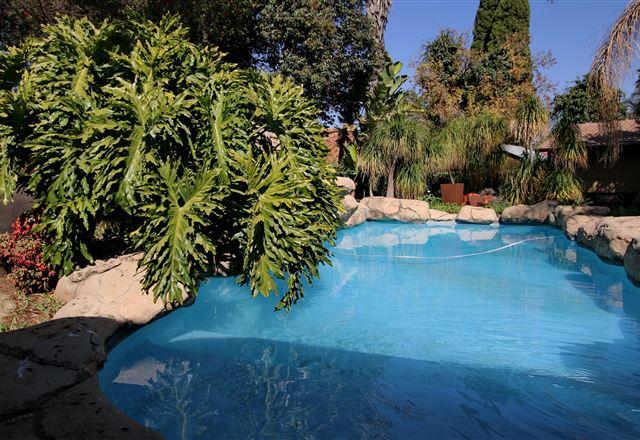 Summer Garden Guest House (The Palms)