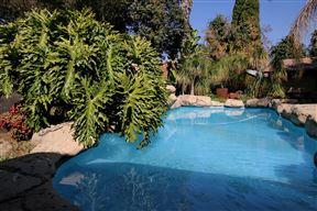 Summer Garden Guest House (The Palms) - SPID:3726570