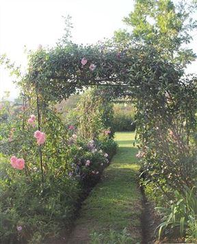 Bella Rosa Farm
