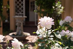 Roses and Pebbles B & B Guest House