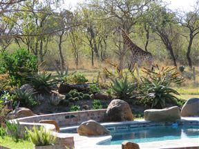 Dombeya Game Reserve, Shonalanga Lodge