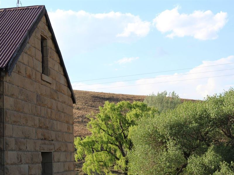 pet friendly Eastern Cape Highlands