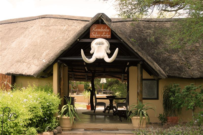 Kambaku Safari Lodge Timbavati