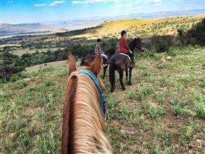 Lydenrust Guest Farm & Horse Trails - SPID:450533