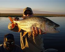 Get your adrenalin pumping by fishing in some of the best Tigerfish waters in the world where fish of between 6 kg to 9kg are landed every season.  Any keen fisherman is welcome to take up the challenge using either conventional or fly tackle.