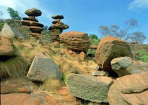 Mountain Sanctuary Park - Magaliesberg