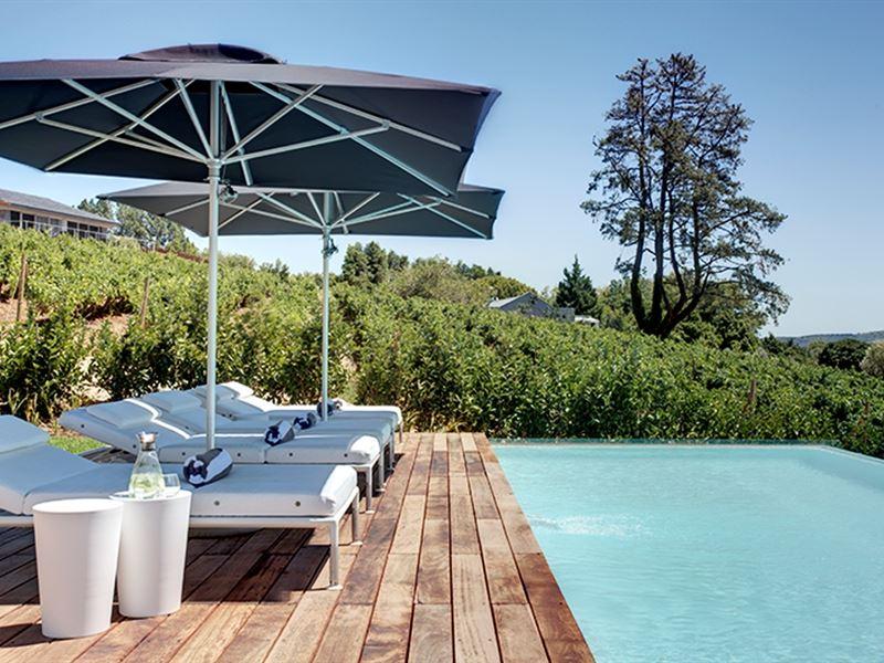 Clouds Estate, Stellenbosch, Winelands 7
