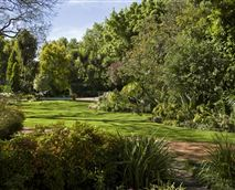 Our garden is full of a wide variety of plants and trees attracting many different birds. One of our guests described it as 'an 'oasis of tranquility'.<br />