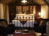 Impangele Safari Lodge-541158