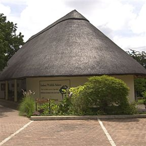 Victoria Falls Rest Camp & Lodges