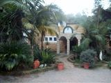 Eden Guest House-552098