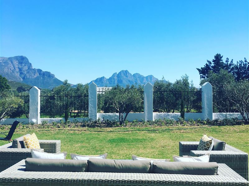 pet friendly Franschhoek