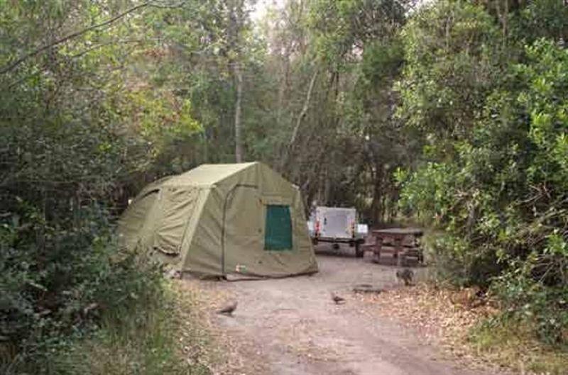 Nature S Valley Rest Camp Garden Route Sanparks