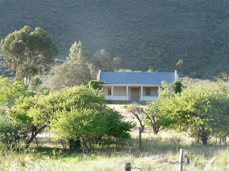 pet friendly Barrydale