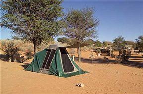 Twee Rivieren Rest Camp Kgalagadi Transfrontier Park SANParks