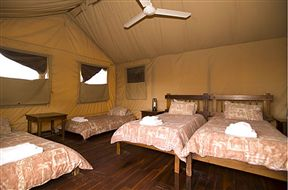 Kalahari Tent Camp Kgalagadi Transfrontier Park SANParks