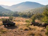 B&B602960 - South Africa