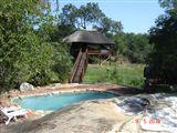 B&B629681 - Limpopo Province