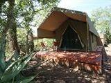 B&B634995 - Limpopo Province