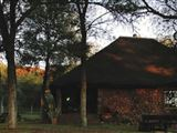 B&B638458 - Bushveld