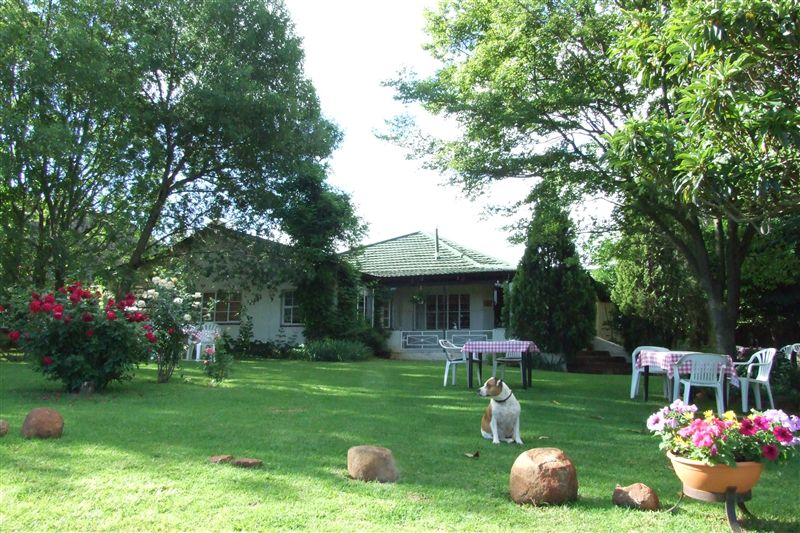 Celtis Lodge Country Retreat Magaliesburg Accommodation And Hotel Reviews