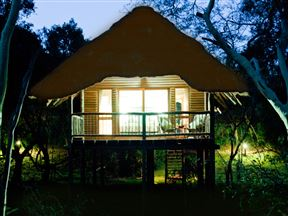 Ubizane Zululand Tree Lodge