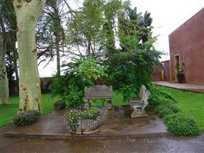 The Fig Tree Lodge