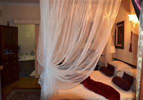Dolphin Whisper Guest House & Spa
