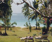 Garden and beach © The Kenyan Portfolio