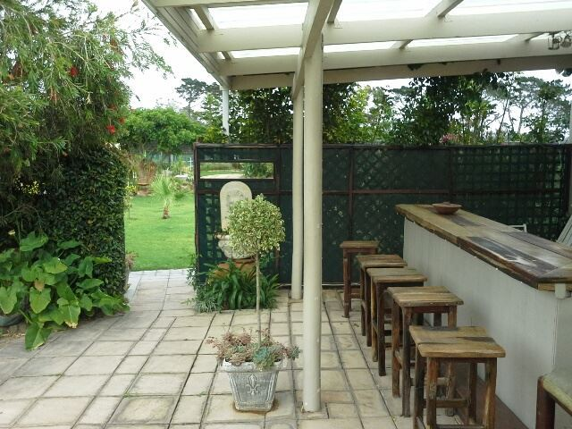 pet friendly Theescombe