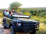 nDzuti Safari Camp-806087