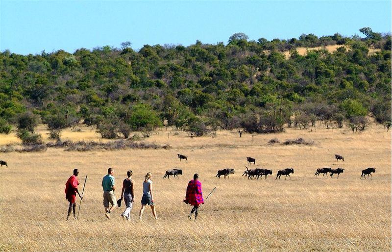 Maasai Mara National Reserve Accommodation