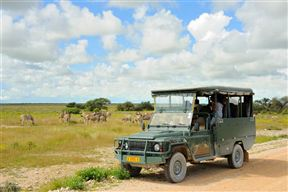 Etosha National Park Accommodation