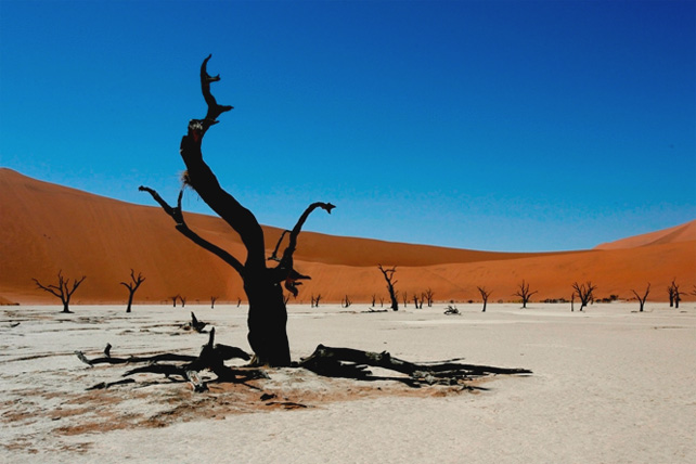 Namib Desert Accommodation