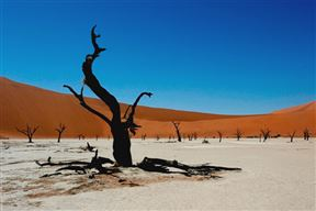 Sossusvlei Accommodation