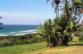 Blythedale Beach Accommodation