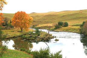 Underberg Accommodation