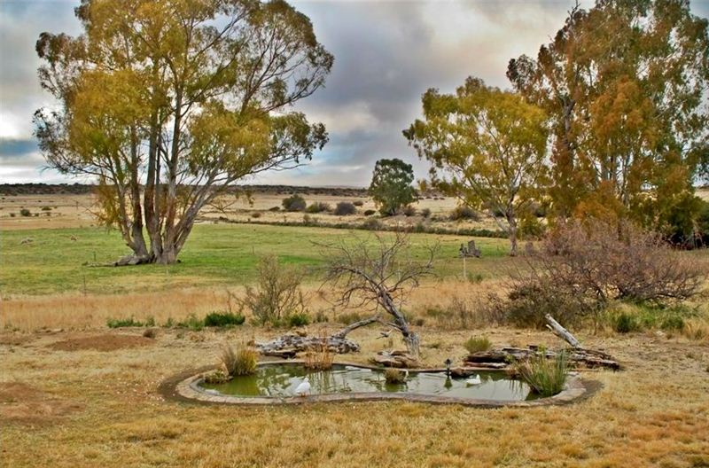 Springfontein Accommodation