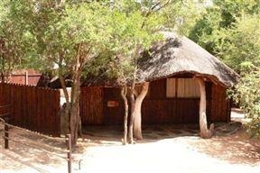 Off Beat Safaris Bush Camp Photo