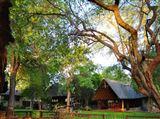 B&B827866 - Limpopo Province