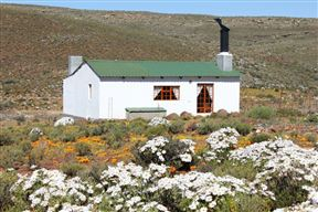 Middelfontein Bed and Breakfast