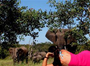 Baobab Ridge Greater Kruger - SPID:844392